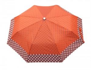parasole-jesien-16